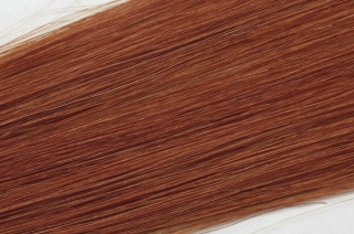 Human Hair Simply Perfect 12-350